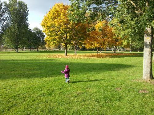 ruduo,medžiai,aukso ruduo,palieka rudenį,kritimo spalva,mergaitė