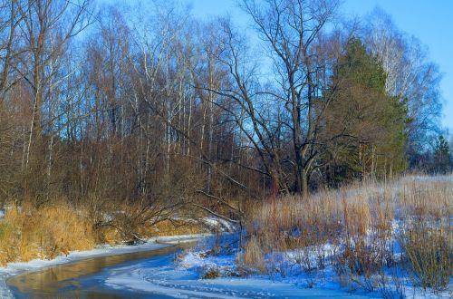 ruduo,upė,sniegas,rami upė,ruduo upe,vanduo,medžiai,kraštovaizdis,mažoji upė,miškas,dangus,šaltai,žiema,už gražiai,grožis,lauke