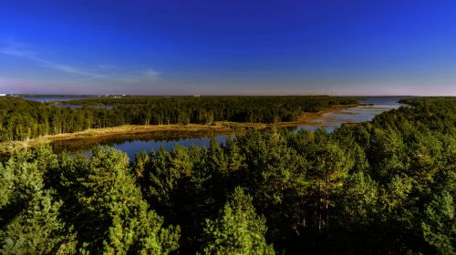ruduo,ežeras,gamta,kraštovaizdis,farbenspiel