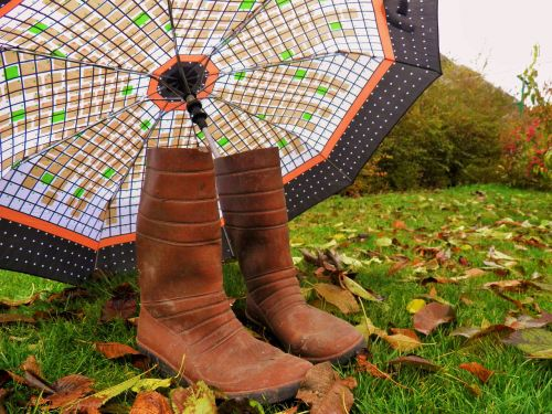 ruduo,skėtis,parke,rudens lapas,gamta,grožis,parkas,aukso ruduo