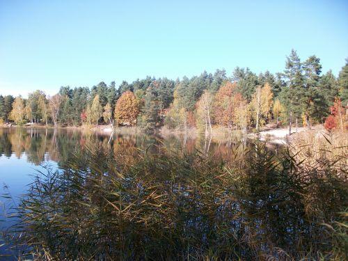 ruduo,ežeras,bankas,farbenspiel