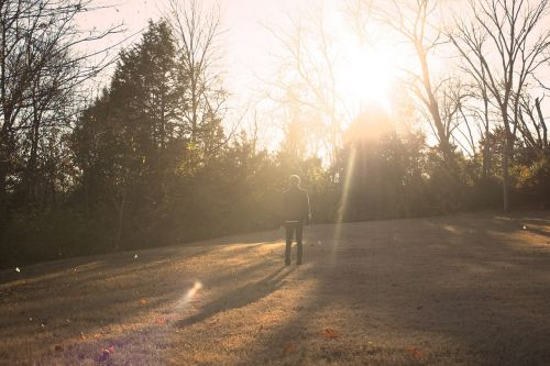ruduo,kritimas,gamta,parkas,lapai,medžiai,saulės šviesa,saulės spinduliai
