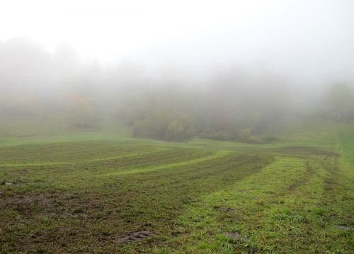 ruduo,rūkas,ariamasis,gamta