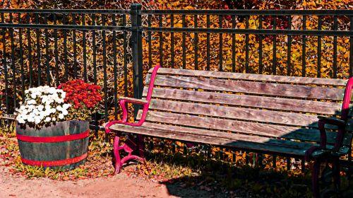 stendas, medinis, kritimas, ruduo, gėlės, mums, sėdynė, sėdėti, rudens stendas