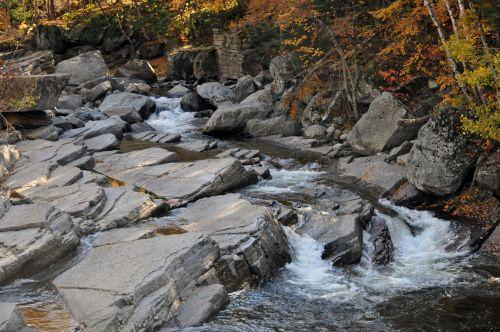 srautas, upė, srautas, vanduo, akmenys, uolingas, kritimas, ruduo, lapija, lapuočių, srautas, rudens srovė