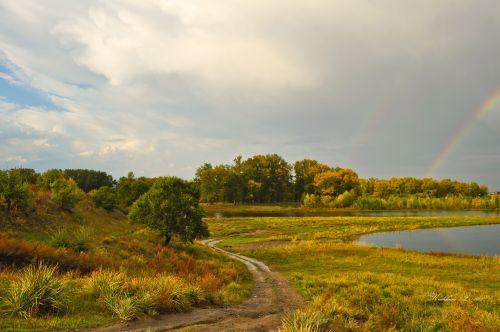 kraštovaizdis, gamta, kritimas, auksas, fėja & nbsp, pasaka, medžiai, geltona, rudens kraštovaizdis