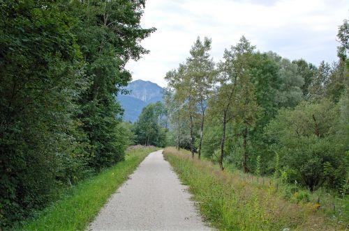 toli,juostos,kraštovaizdžio kelias,miško takas,gamta,žalias,žygiai,takas,medžiai,Promenada,šventė,atsigavimas,laisvalaikis,gamtos takas,medžio pamušalas