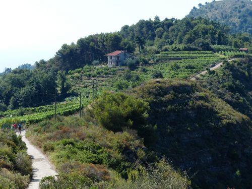 toli,takas,ligurija,Ligurijos kalnų takas,alta via dei monti pasveikino,avml,kalnų ligurijos takas,ilgo nuotolio takas,keliautojas,Höhenweg