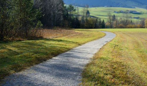 toli,gamta,pieva,juostos,purvo kelias,žalias,komercinis kelias,žolė,gamtos takas,žygiai,vaikščioti