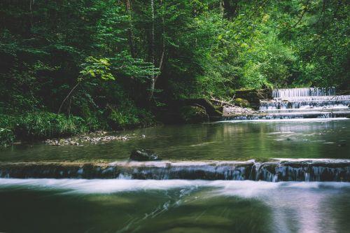 Bachas,upė,vanduo,gamta,srautas,žalias,upelis,vandenys,miškas,vanduo veikia,idiliškas,miškas,užaugo,aišku,skaidrus vanduo,poilsis,atsipalaidavimas