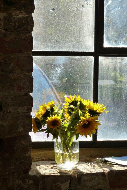 atgal šviesa,šviesus,geltona,gėlė,senoji plytinė,gamykla,industrija,pasibaigė,senas,plyta,pastatas,išlieka,paminklas,sergantis,natiurmortas