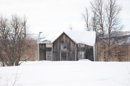 badgers,namas,likimas,paliktas,sniegas,senas