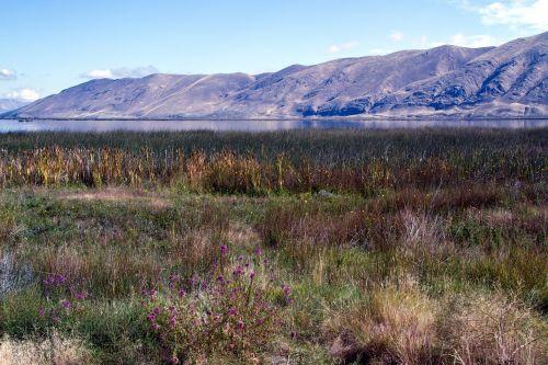 Baer ežeras,idaho,Utah,usa,amerikietis,kraštovaizdis