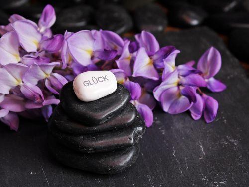 balansas,meditacija,akmenys,akmenukai,zen,atsipalaidavimas,sluoksniuota,sukrauti,akmens bokštas,bokštas,tylus,sėkmė,akmens laimė,Rašto laimė,sveikata,gėlė,violetinė,violetinė,juoda,purpurinė gėlė,gėlės,violetinė gėlė,purpurinės gėlės,fonas,deko,apdaila,dekoratyvinis,emocija