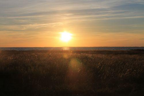 Baltijos jūra,jūra,saulėlydis,auksas,gamta,vanduo,saulė,kranto,denmark,banga,vasara,vakaras,nuotaika,saulės spindulys,kraštovaizdis,žolė,pieva,šviesos spindulys