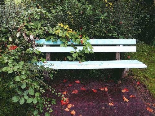 bankas,sodas,parkas,poilsis,sodo stendas,gamta,sėdėti,žalias,parko suoliukas,stendas,poilsio vieta,senas,sėdynė,atsigavimas,spustelėkite,atsipalaiduoti,senas stendas,pertrauka,tylus,idilija,atsipalaidavimas