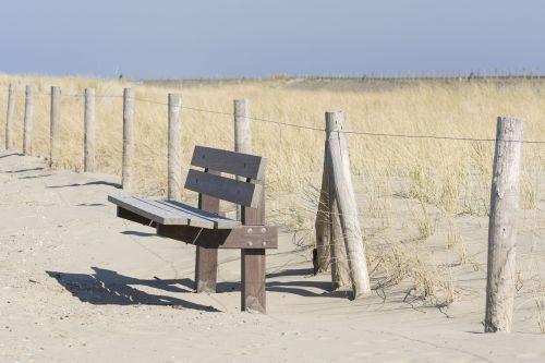 bankas,stendas,sėdėti,kūno rinkiniai,žygiai,papludimys,medinis stendas,medžio stendas,poilsis,gamta,baldai,vaizdas,saulė