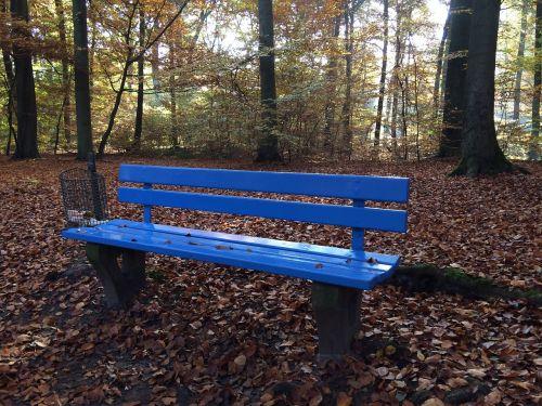 bankas,ruduo,pertrauka,miškas,lapai,medžiai,kritimo lapai,poilsio vieta,gamta,mėlynas,poilsio zonos bankas,rudens miškas,vienišas bankas,idilija