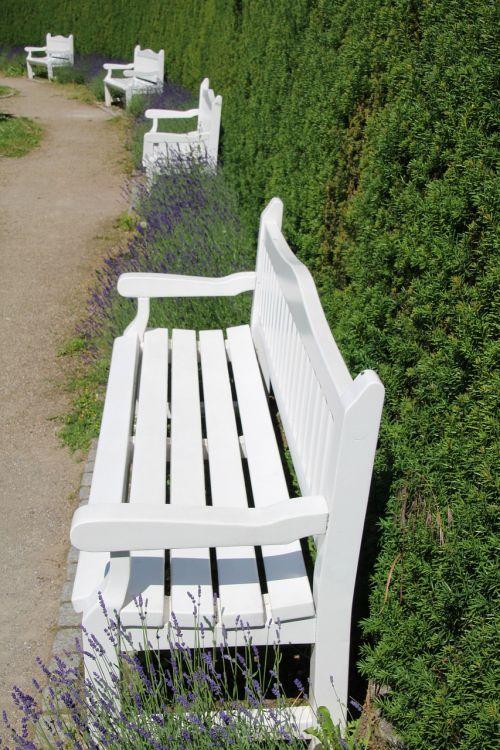 bankas,parko suoliukas,balta,sėdynė