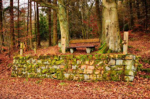 bankas,medinis stendas,smiltainiai,samanos,stogas,žalias,poilsis,gamta,stendas,sėdynė,miškas,spustelėkite,taika,ištemptas,mediena,senas medinis stendas,sėdėti,senas,takas,tylus,out,romantika,senas stendas,ramybės pagrindas,medžiai