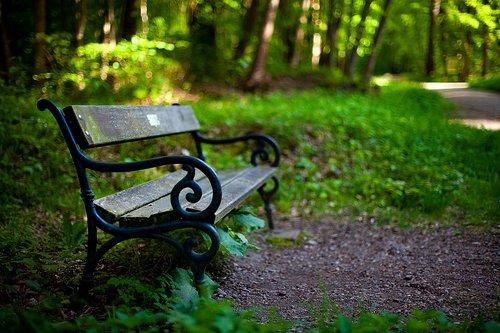 bankas, Sodas, pobūdį, parko suoliukas, Steigerwald Erfurtas, miškas, sodo suoliukas, pavasaris, atsipalaidavimas, poilsio, medinis stende