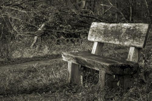 bankas,miškas,stendas,gamta,suolai,poilsis,tylus,medinis stendas