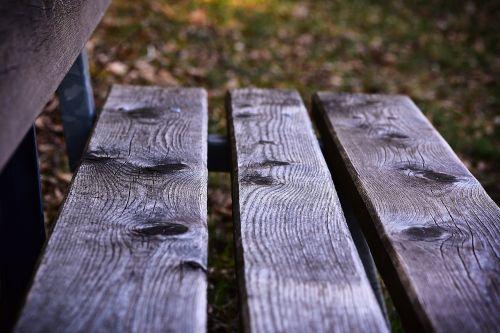 bankas,medinis stendas,stendas,out,gamta,mediena,spustelėkite,poilsis,Uždaryti