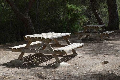 bankai medžio,poilsis,parkas,taika,taikus,sėdėti
