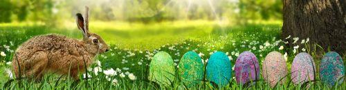 reklama,Velykos,kiškis,kraštovaizdis,kiaušinis,medis,gėlė,pieva,spalvos,spalvinga,Velykinis kiaušinis,Velykų dekoracijos,pagal užsakymą,maistas,hartgekocht,dažytas kiaušinis,pavasaris,apdaila,kiaušinių grandinė,serijos