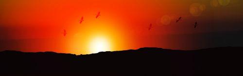 reklama,antraštė,saulėtekis,paukščiai,saulėlydis,saulė,nuotaika,afterglow,Morgenrot,kraštovaizdis,dangus,vakarinis dangus,morgenstimmung,dusk,atmosfera