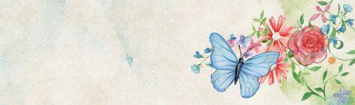 reklama, internetas, romantiškas, drugelis, gėlė, gražus, dekoratyvinis, elementas, plėtra, dizainas, www, reklaminis tinklalapis romantiškas drugelis