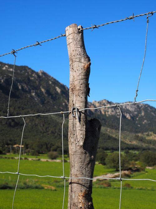 spygliuoto plieno tvora,viela,aptvertas,metalas,tvora,saugumas,erškėtis,demarkacija,gynyba,riba,barjeras,pranešimas,krūva,Wildzaun,laukinės gamtos tvora,Tinklelis,vielos tinklai,mazgų tinklai,miško dirvožemis,megzti akiniai,laukinių gėrybių,ganyklų tvora,galvijų tvora,avių tvora,avių tinklai,greitkelio tvora,šuo tvora