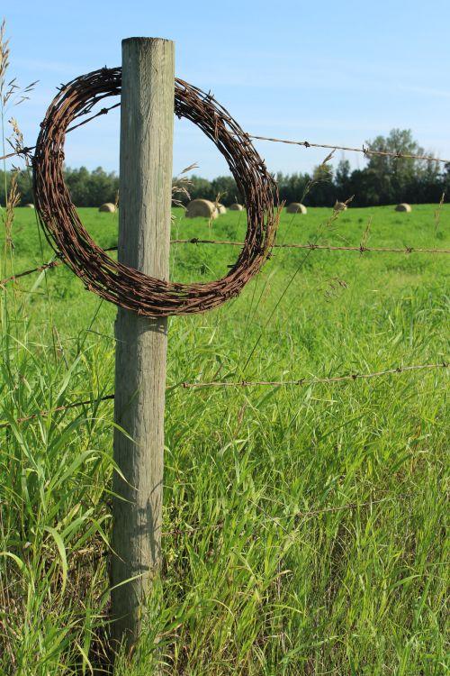 spygliuotas, viela, tvora, ūkis, medinis, pranešimas, žvyro tvoros ūkis