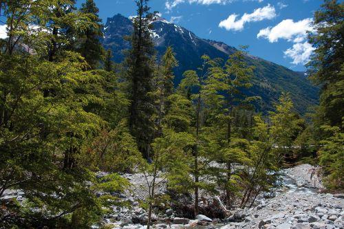 bariloche,argentina,šventė,turizmas,vanduo,kalnas,gamta,andes,juodoji upė,Cordillera,ramus,Andes kalnai,patagonia,akmenys,natūralus,amerikietis,argentina patagonia,pietų argentina,kraštovaizdis,spalvinga