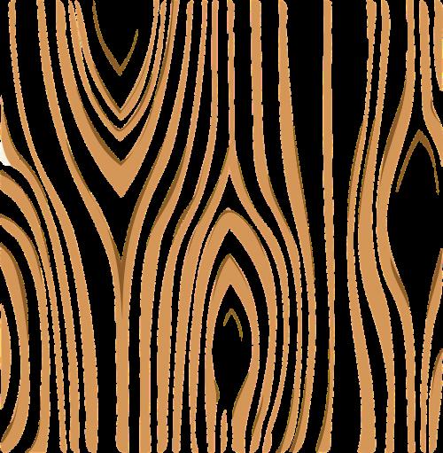 žievė,mediena,medis,bagažinė,ruda,balta,medinis,tekstūra,mediena,kietmedis,mediena,kaimiškas,nemokama vektorinė grafika