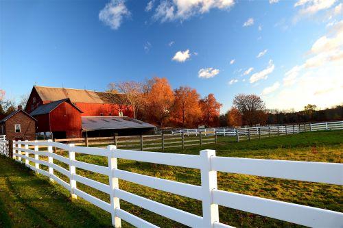 tvartas,tvora,kaimas,ūkis,Žemdirbystė,mediena,raudona,Šalis,ranča,kraštovaizdis,žalias,pastatas,dangus,medinis,ūkininkavimas,ganykla,laukas,lauke,žolė,kaimiškas,mėlynas,struktūra,balta,žemės ūkio paskirties žemė,scena,spalvinga,kiautinė mediena