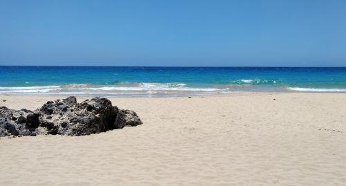 papludimys,smėlis,vandenynas,jūra,mėlynas,vulkaninis uolas,Hawaii,bangos,kraštovaizdis