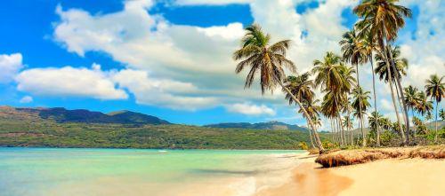 papludimys,rojus,palmės,jūra,šventė,maudytis,Smėlėtas paplūdimys,vandenynas,saulė,smėlis,vanduo,poilsis,rojus rojus,atostogos,dangus,Šalis,patirtis,palmių paplūdimys,paplūdimio panorama,palma,Dominikos respublika,Karibai