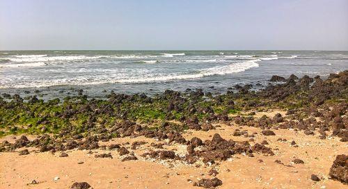 papludimys,Stoney paplūdimys,atogrąžų,kranto,vanduo,Krantas,turizmas,jūra,vandenynas,kraštovaizdis,šventė,smėlis,lauke,žalia paplūdimys,gamta