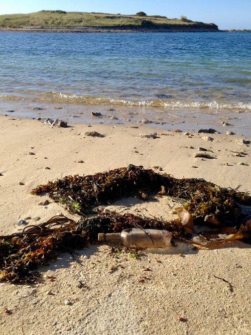 papludimys, butelis, jūra, butelis jūroje, tuščias butelis, vandens, Vandens butelis, susitikimo, kelionė