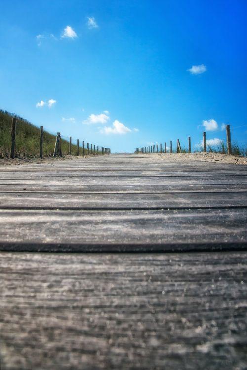 papludimys,vaikščioti,Šiaurės jūra,į kalną,perspektyva,holland,mėlynas,vanduo,debesys,kopos,vėjo apsauga,jūra,paplūdimys,smėlio paplūdimys vasara,gamta,kranto,banga,smėlis,šventė,atsipalaiduoti,laisvalaikis,smėlio,nendrė,atostogos,žolė,mediena,toli