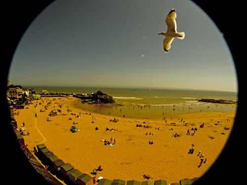 papludimys, smėlio, kajakas, žmonės, papludimys, paplūdimys ir žuvėdra