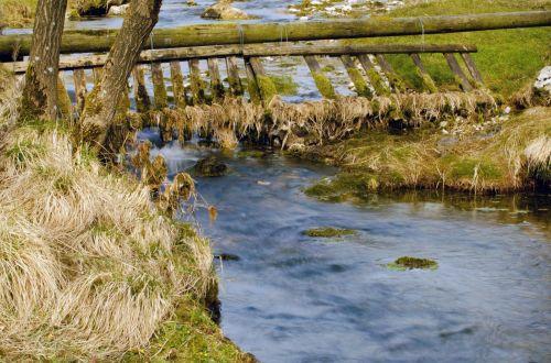 vanduo, srautas, upelis, gamta, kraštovaizdis, fonas, makro, Anglija, Šiaurė, Jorkšyras, elementas, gražus, gražus, sezonas, pavasaris, vasara, gražus srautas