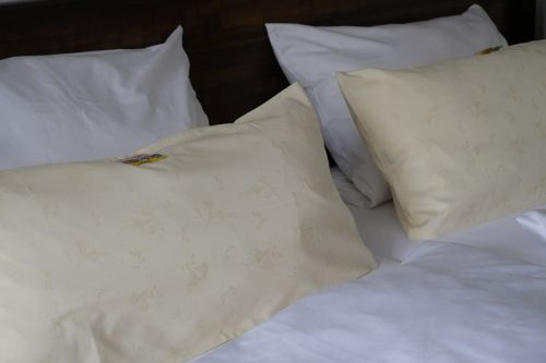 lova,dvigulė lova,miegoti,pagalvė,poilsis,pavargęs,atsipalaiduoti,atsipalaidavimas,jaukus,apgyvendinimas,kambarys,viešbutis,viešbučio kambariai,užeiga,Gasthof,lova amp,pusryčiai,butas,šventė,turistinis,turizmas