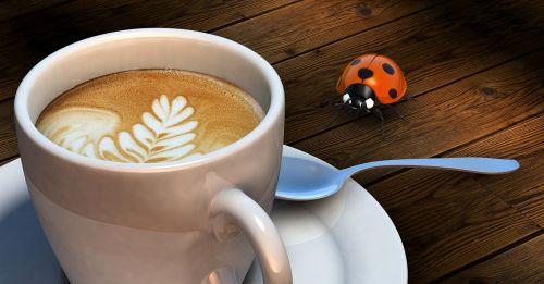 vabalas,kava,taurė,Crema,kavos putos,Milchschaum,šaukštas,3d modelis,pertrauka,fonas