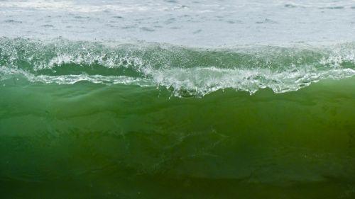 banga, Curl, žalias, permatomas, vandenynas, papludimys, energija, pradėti kreivę