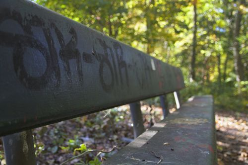 stendas,vienišas,miškas,gamta,sėdėti