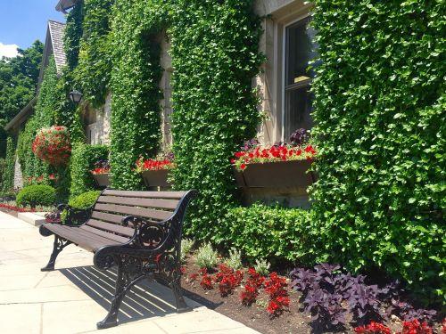stendas,gamta,siena,žalias,atsipalaiduoti,parkas,lauke,ramus,vasara,atsipalaidavimas,natūralus,taikus,pavasaris,scena,sėdynė,niekas,sezonas,sodas,augalai,gėlės,augimas,flora,sezoninis,langas,žemė,vienatvė,atspindys,kontempliacija,aplinka,vaizdingas,saulėtas