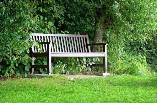stendas,bankas,sėdynė,medžiai,gamta,žalias,out,poilsis,miškas,sodas,poilsio vieta,atsigavimas,sodo stendas,pertrauka,idiliškas,atsipalaidavimas,sodo baldai,šešėlis