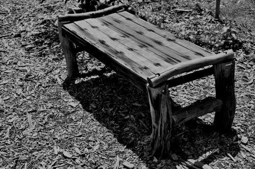 mediena, medis, stendas, juoda & nbsp, balta, tekstūra, lustai, kelias, stende juodai balta